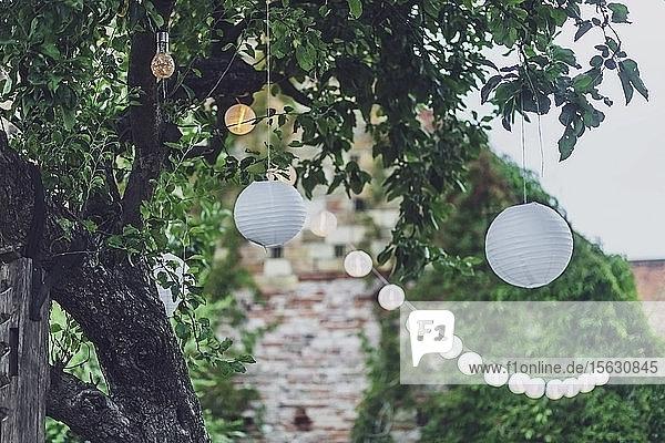 Niedrigwinkelansicht von Weihnachtslichtern  die bei einer Party im Hof an Bäumen hängen