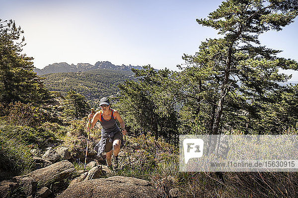 Wanderin  Aiguilles de Bavella  Korsika  Frankreich