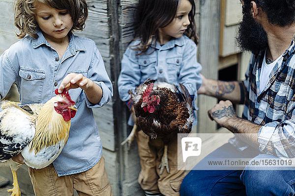 Vater mit zwei Kindern im Hühnerstall auf einem Biohof Vater mit zwei Kindern im Hühnerstall auf einem Biohof