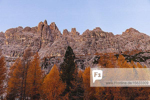 Herbstliche Berglandschaft im Morgenlicht  Dolomiten  Cortina  Italien
