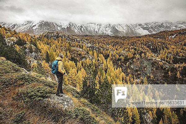 Wanderer steht und blickt im Herbst über das Alpenplateau  Sondrio  Italien