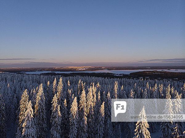 Finnland  Kuopio  Luftaufnahme der Winterlandschaft bei Sonnenuntergang