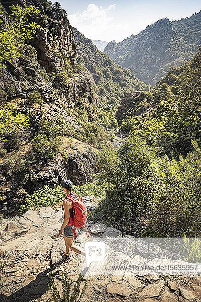 Wanderin während der Wanderung  Gorges de Spelunca  Ota  Corse-du-Sud  Korsika  Frankreich