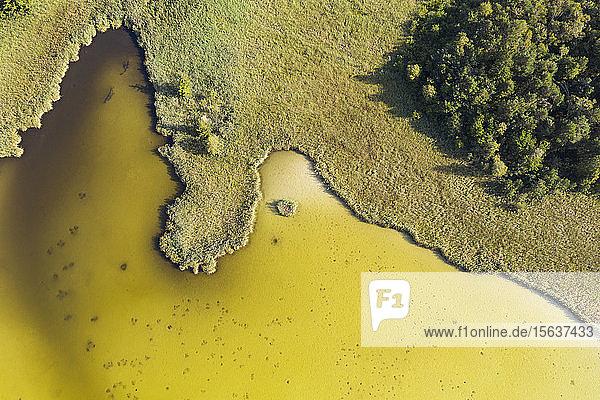 Luftaufnahme des Harmatinger Teiches  Egling  Deutschland