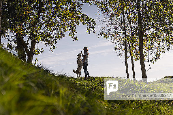 Junge Frau unterrichtet ihren Hund bei Sonnenuntergang in der Natur