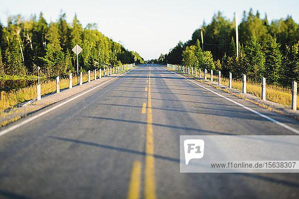 Leere Straße im Algonquin-Provinzpark  Ontario  Kanada