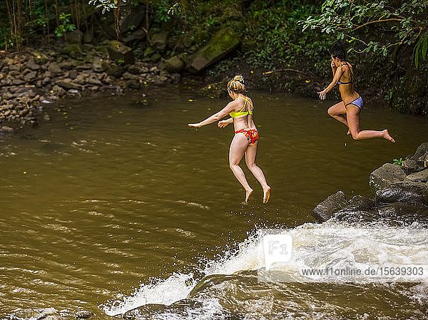 Two women wearing bikinis cliff jumping from the top of one of the Twin Falls waterfalls; Haiku  Maui  Hawaii  United States of America