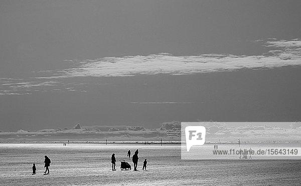 Menschen  Silhouetten im Watt  monochrom  Nordsee  Sankt Peter Ording  Schleswig-Holstein  Deutschland  Europa