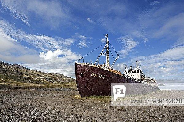 Stahlschiff Gardar BA 64  Schiffswrack aus dem Jahr 1912  an der Straße 612  bei Patreksfjördur  Westfjorde  Island  Europa