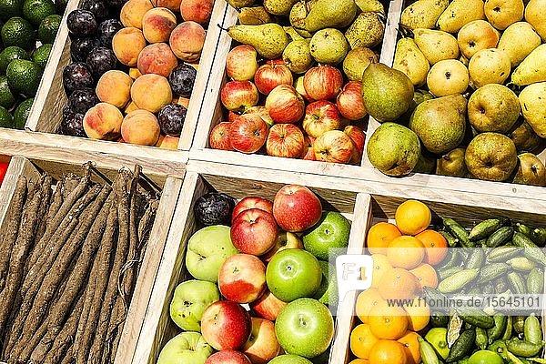 Bio-Obst und Bio-Gemüse im Bio-Markt auf der ANUGA Lebensmittelmesse  Köln  Nordrhein-Westfalen  Deutschland  Europa