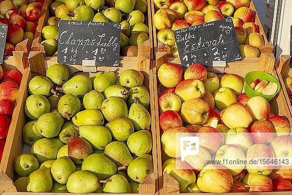 Frische Äpfel und Birnen mit Preisschildern in Holzkisten an einem Marktstand  Deutschland  Europa