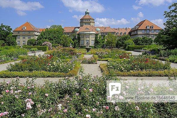 Historisches Botanisches Institut und Rosengarten  Botanischer Garten München-Nymphenburg  München  Oberbayern  Bayern  Deutschland  Europa