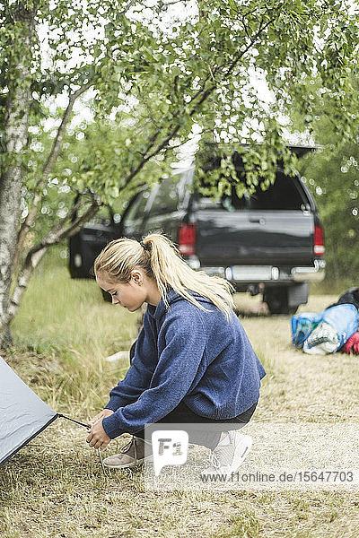 Teenager-Mädchen stellt Zelt auf Campingplatz auf
