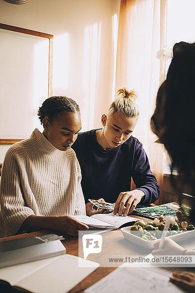 Junge und Mädchen lernen gemeinsam über ein Projekt bei Tisch zu Hause