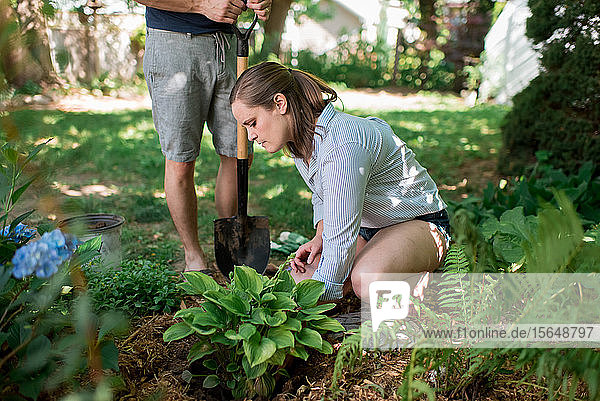Couple gardening in backyard