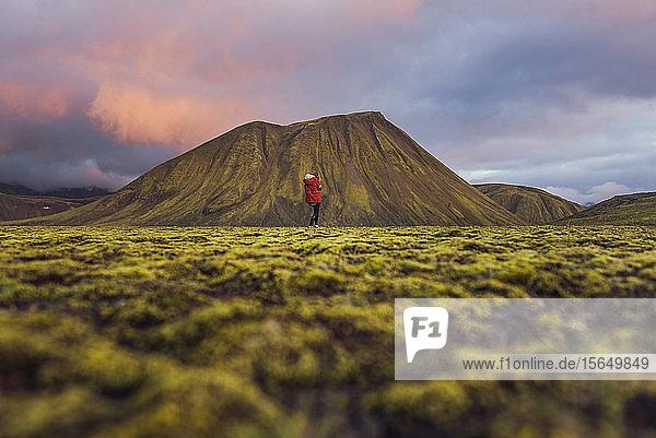 Hiker exploring mossy landscape  Landmannalaugar  Highlands  Iceland