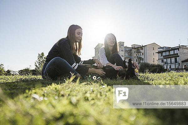 Schwestern spielen mit Hund im Park