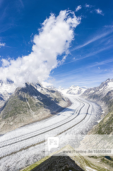 Panoramic of the ice tongue of Aletsch Glacier seen from Eggishorn viewpoint  Bernese Alps  canton of Valais  Switzerland
