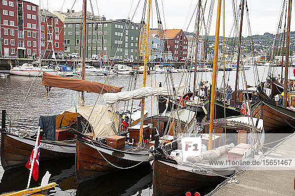 Wooden sailboats at the old boat festival in Trondheim  Trondelag  Norway  Scandinavia