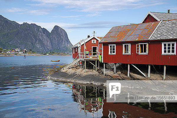 Rorbu  traditional fishermen's cabins now used for tourist accommodation in Reine  Moskenesoya  The Lofoten Islands  Norway