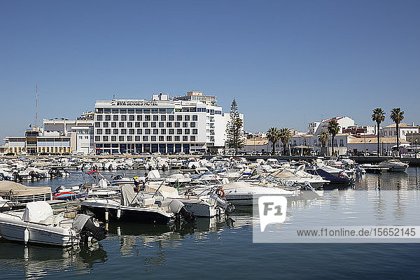 Boats moored at harbor against clear sky in Faro  Portugal
