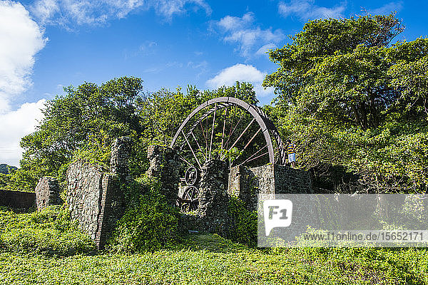 Low angle view of historic Speyside water wheel by trees against sky during sunny day  Tobago  Caribbean