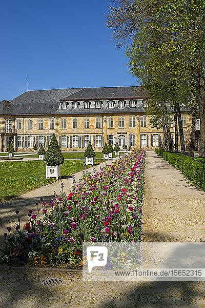Plants growing in front of New Castle Bayreuth against clear blue sky  Franconia  Germany