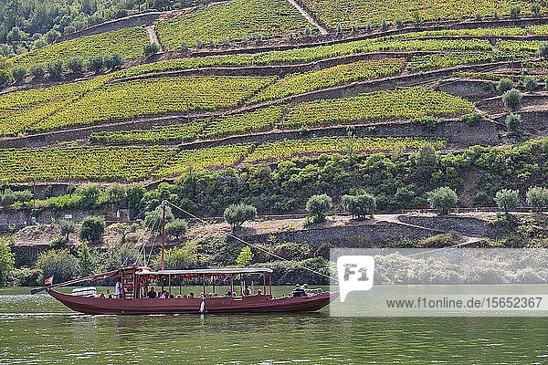 Portugal  Douro  Douro Valley  Tourboat on river in wine region seen over water