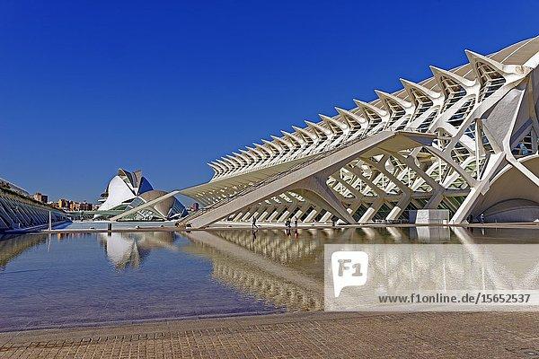 L'Hemisfèric  Ciutat de les Arts i les Ciéncies  Valencia  Spain  Europe