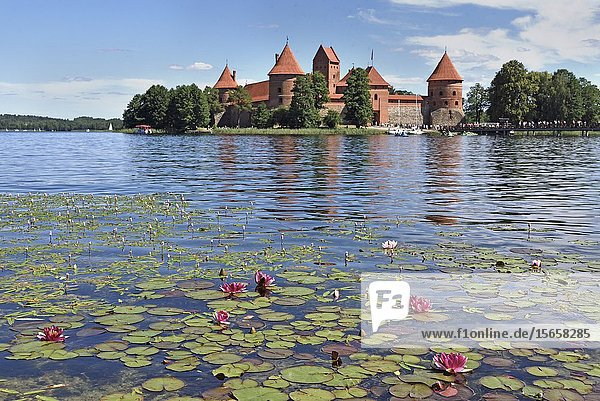 Trakai Castle on an island in Lake Galve  Lithuania  Europe.