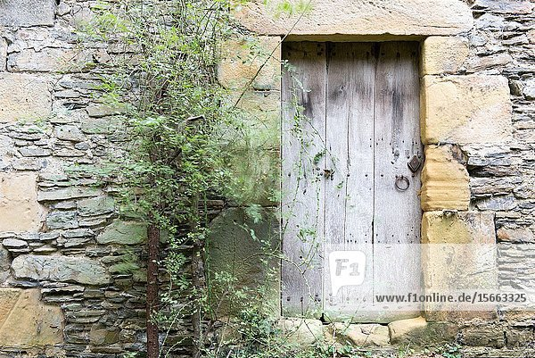 Old wooden door and stone wall. Agorregi  Pagoeta Natural Park  Basque Country  Spain.