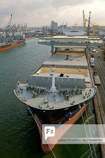 Dry cargo ship 'Star Kvarven' discharging cargo of paper at Port of Livorno Italy.