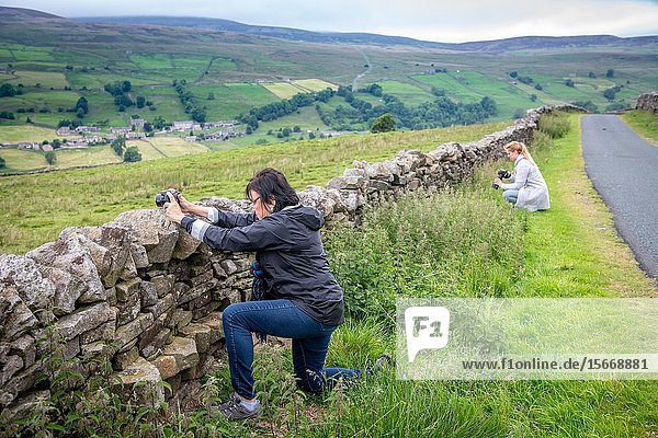 A woman stops to photograph the countryside of Hawes  Yorkshire  UK.