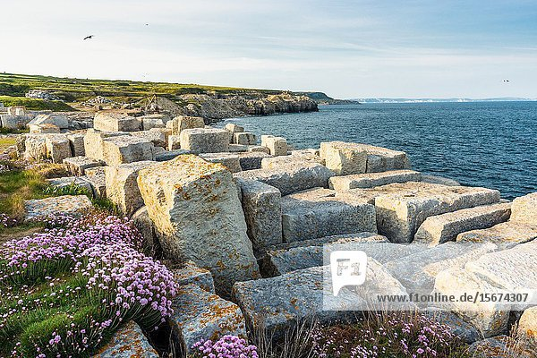 Remains of an ancient disused quarry at Portland Bill on the Isle of Portland,  Dorset. England. UK.