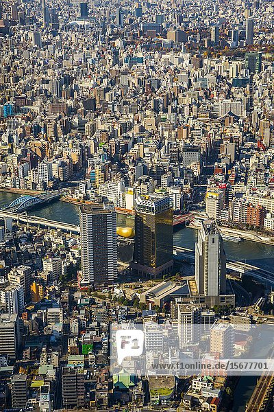 View of Tokyo from Tokyo Sky Tree. Sumida river. Sumida Neighborhood. Tokyo. Japan.