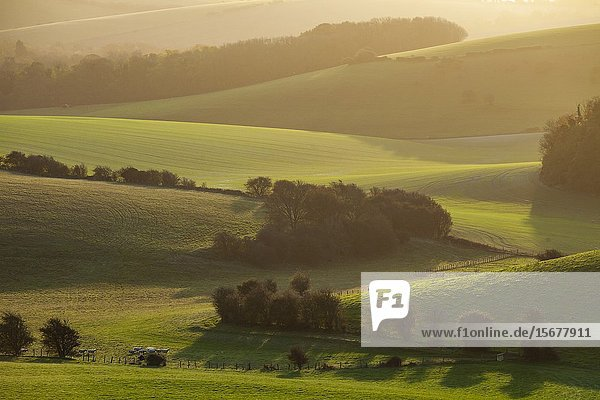 Autumn sunrise in South Downs National Park near Brighton  East Sussex  England.