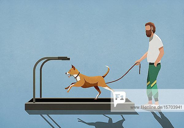 Mann mit Leine beobachtet Hund  der auf dem Laufband läuft