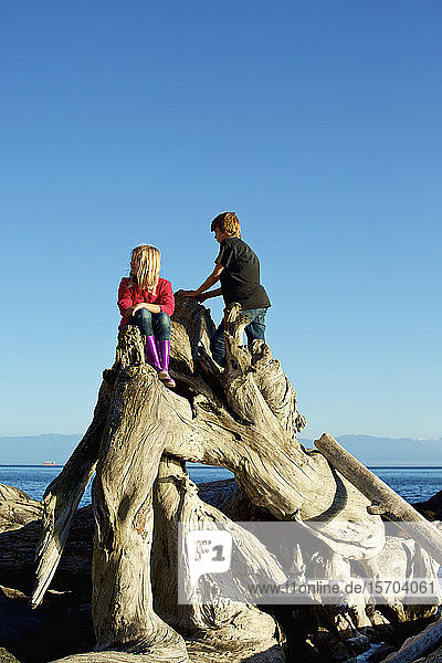 Brother and sister playing on driftwood at beach