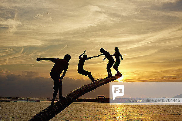 Silhouette carefree kids playing on tree trunk over sunset ocean  La Ticla  Michoacan  Mexico