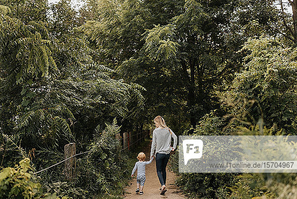 Mutter und Sohn gehen im Wald spazieren