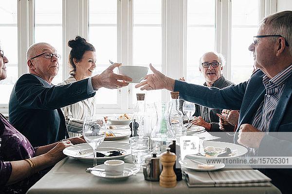 Ältere männliche und weibliche Freunde sitzen zum Mittagessen am Tisch im Restaurant