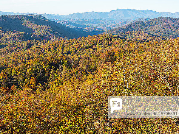 Autumn view of the mountains from the Blue Ridge Parkway  Appalachia  North Carolina  United States of America  North America