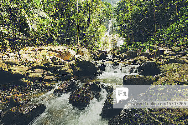 Thailand  Forest stream flowing between rocks