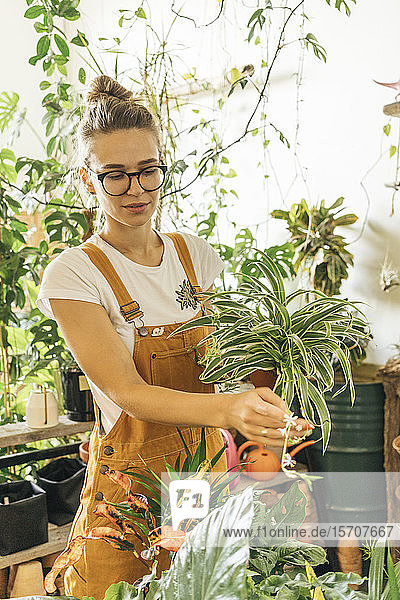 Young woman caring for plants in a small shop