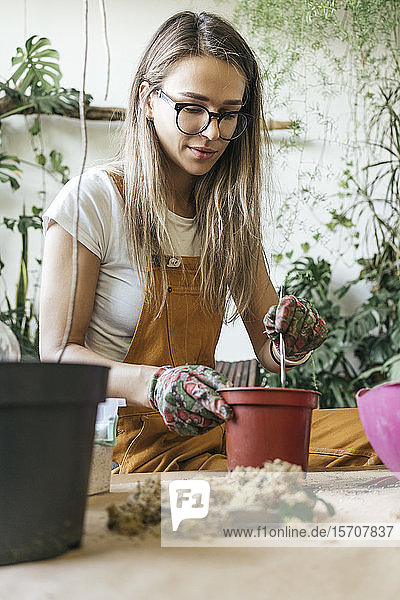 Young woman working at table in a small gardening shop