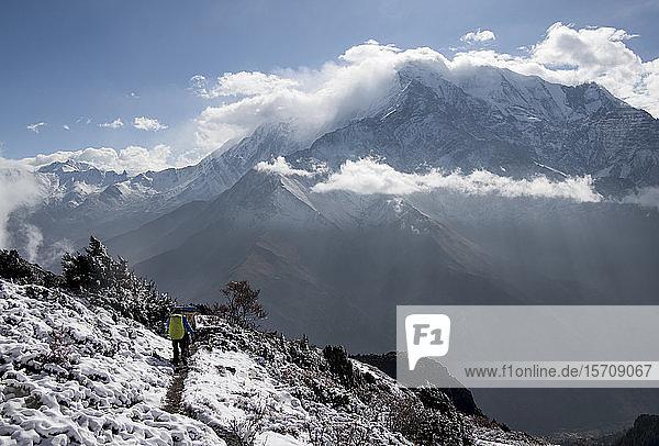 Yak Kharka  Nilgiri  Dhaulagiri Circuit Trek  Himalaya  Nepal