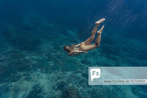 Junge Frau beim Tauchen  Insel Nusa Penida  Bali  Indonesien
