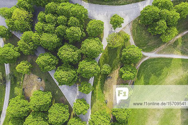 Deutschland  Bayern  München  Luftaufnahme der Fußwege über den Olympiapark im Sommer