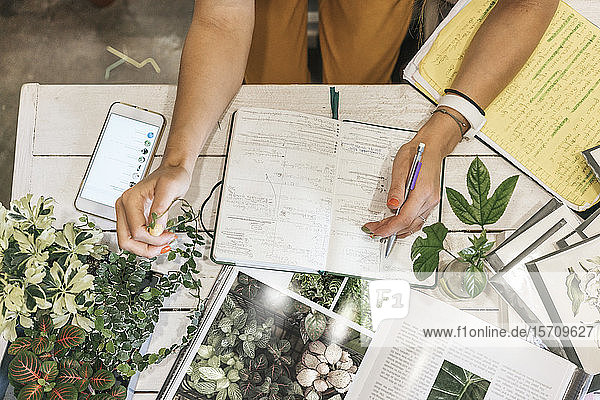 Top view of woman taking notes in a small gardening shop