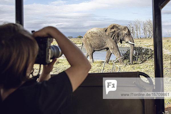 Rückenansicht eines Mädchens  das einen Elefanten fotografiert  Inverdoorn Wildreservat  Breede River DC  Südafrika